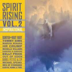 Click for review of Spirit Rising Vol. 2
